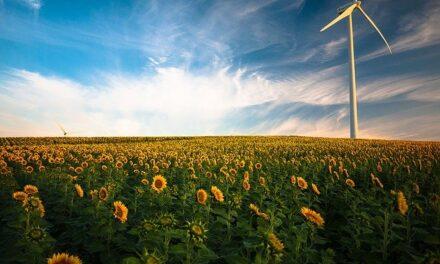 España impulsa la transición energética favoreciendo el despliegue de las energías renovables