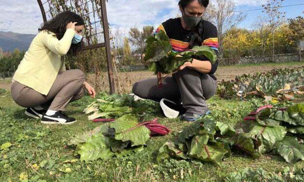 La Comunidad de Madrid pone en marcha un nuevo Laboratorio de Agricultura Abierta en Aranjuez