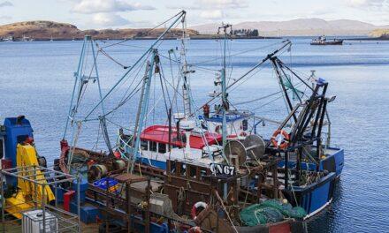 España pide a la Comisión Europea certidumbre en la fijación de las cuotas de pesca con Reino Unido
